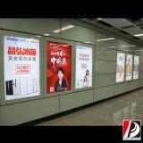 広告のための公共の昇進のライトボックスのバックライトを当てられたフィルム(LIT-08)
