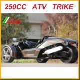 Roadster de 250cc Ztr com o Ec aprovado