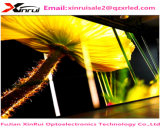 Alta qualidade impermeável ao ar livre de venda quente do indicador de diodo emissor de luz da cor cheia de P6 SMD