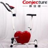 Bicicleta magnética en forma de corazón del ejercicio de la resistencia del hogar ocho de la aptitud