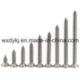 Usine principale fraisée par Recesed en travers de vis $parker de l'acier inoxydable 304 DIN 7982 de la Chine
