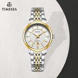 Nuovo orologio 71178 delle signore dell'acciaio inossidabile dei monili del diamante di modo