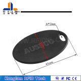 ABS intelligente RFID Karte für Schlüsselkette