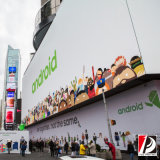 Напольный винил рекламируя стену печатание рекламируя (VIN-03)