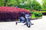 Колеса Trike автомобиля 3 малышей электрического карманного Bike смещения Trike тавра Jinyi миниые (JY-ES002)