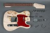 Basswood с набором гитары DIY верхней части тополя Birdeyes