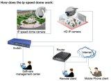 2MP HD는 33X 광학적인 급상승 PTZ CCTV IP 사진기를 조정한다