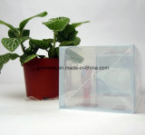 투명한 플라스틱 PP/PVC/PET에 의하여 인쇄되는 상자 (명확한 포장 상자)