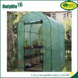 Chambre verte de tunnel de film d'Onlylife de jardin inférieur de polycarbonate