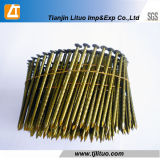 Painted Screw Shank Coil Nail Pallet Coil Nail