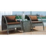 1つの表が付いているトルコのPEの藤の柳細工の家具
