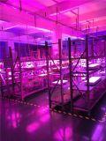 Крытый зацветая полный CREE 600W СИД спектра растет свет