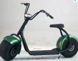 [نو مودل] [ديسك برك] [لي] بطارية نوع اثنان عجلة درّاجة ناريّة كهربائيّة لأنّ بالغات