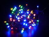 Flashs de chaîne légère de chaîne de caractères de Noël de DEL pour Decortaion extérieur