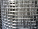 Фабрика для Electro Galvanized Welded Wire Mesh