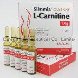 Antioxidante poderoso 2g L injeção da carnitina para a perda de peso