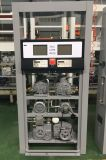 Erogatore del combustibile della stazione di servizio di Zcheng (doppio ugello)