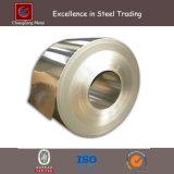 De Rol van het Roestvrij staal SUS 304 (CZ-C22)