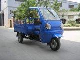 새로운 3개의 바퀴 가스에 의하여 자동차를 타는 기관자전차