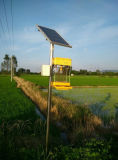 태양 에너지를 가진 곤충 살인자 램프