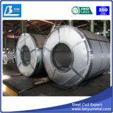 G550 катушка листа утюга покрынная цинком гальванизированная стальная для сбывания