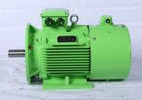 Niedriger Preis-Qualität 3 Phase elektrischer Soem-Motor