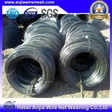 Schwarzes Soft Light Annealed Iron Wire für Building Materials mit SGS