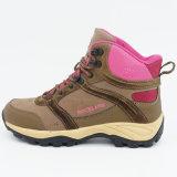 女性のための靴をハイキングする本革