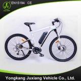 高速中間駆動機構の電気バイク(TDF93L)