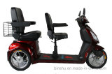 500Wの3つの車輪の二重シートの禁止状態にされたスクーター