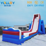 164ft 50m Long Gaint Huge Inflatable Slide、Hippo Slide