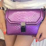 Crossbody 지갑 어깨에 매는 가방 공장 가격 숙녀 핸드백 뱀 사탕 색깔은 Sy7766를 자루에 넣는다