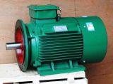 Motor de Met meerdere snelheden van de Reeks van yard Asynchrone