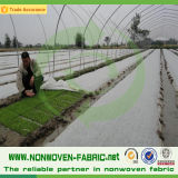 Breathable Nonwoven Fabric für Agriculture Cover