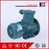 高速の三相AC耐圧防爆モーター