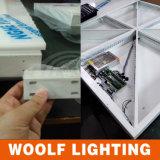 Piste da ballo portatili di DMX512 RGB LED da vendere