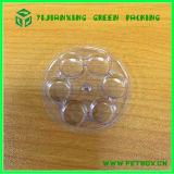 Caja de empaquetado de la ampolla de la electrónica de plástico de embalaje
