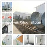 Het volledige Vastgestelde Huis van het Landbouwbedrijf van het Gevogelte van de Structuur van het Staal