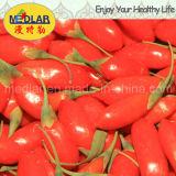 Fruta china orgánica de Goji Wolfberry del níspero