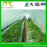LDPE / PE Agriculture / Big Shed Films pour couverture avec UV