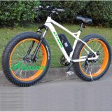 Bicicleta elétrica do Ce da sujeira do motor da praia da neve da montanha
