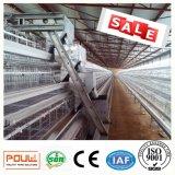 Het automatische Systeem van de Ventilatie van de Apparatuur van het Landbouwbedrijf van het Gevogelte van de Kooi van de Kip van de Laag