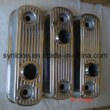 La précision les pièces en aluminium de moulage mécanique sous pression avec la surface de peinture de jet