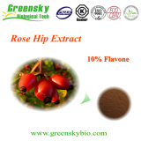 Polvo natural del extracto del 100% Rosa Rugosa Thunb