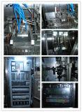Máquina de embalagem de preenchimento de papelão Gable-Top (BW-2500A)