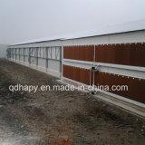 鶏のための軽い鉄骨構造の養鶏場の構築