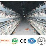 Las aves de corral de la alta calidad Egg la jaula del pollo de la capa 128 capas para la venta