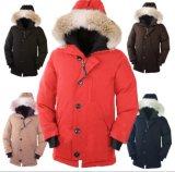 Доказательство ветра куртки зимы вниз сгущает пальто зимы содержания теплое