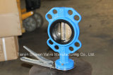 Cast Iron Wafer Butterfly Valve with Handle