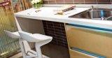 Gabinete de cozinha o mais atrasado modular do gabinete de cozinha da laca do MDF (zz-042)